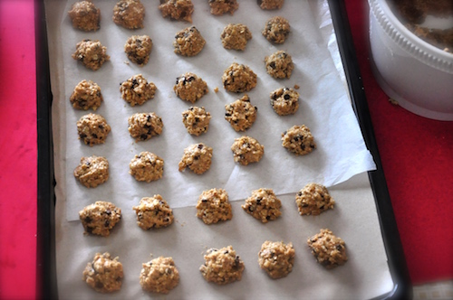 oatmeal chocolate chip cookies ion baking tray Oatmeal Chocolate Chip Cookies